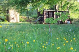 Carriage-meadow.JPG